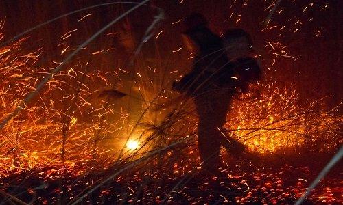 Метеорологи прогнозируют высокий пожароопасный класс в лесах Иркутской области 3 мая