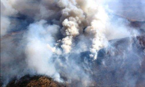 ВБайкало-Ленском заповеднике потушили последний пожар