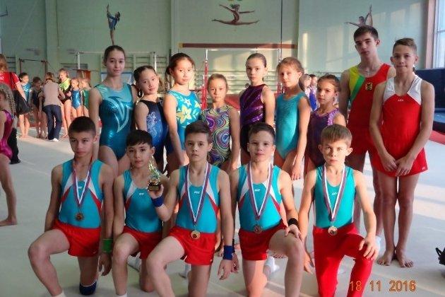 Бийские гимнасты добились успеха наВсероссийских соревнованиях вКрасноярске