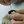 Секреты мастеров»: Валяние - игрушки из шерсти
