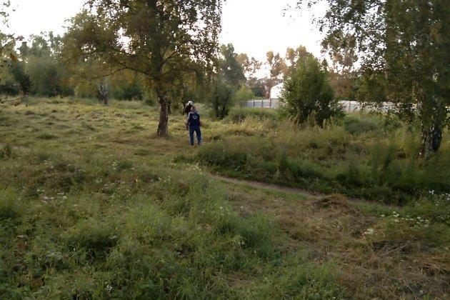 Рабочие косят траву на территории участка для строительства