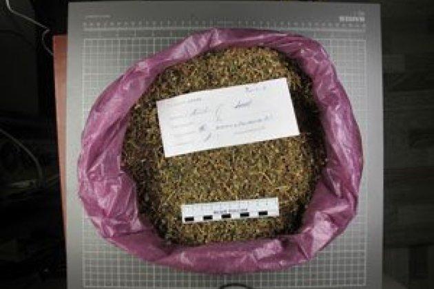 Полицейские изъяли умосквича около 46кг марихуаны