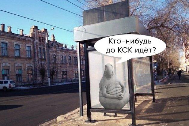 Копия / 639075 /
