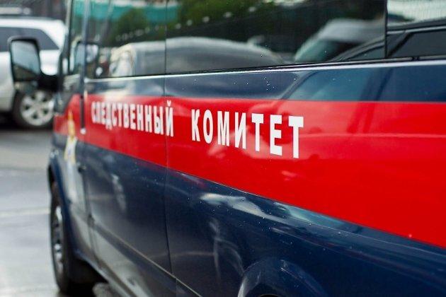 Впроцессе матча на17-летнего вратаря вИркутской области упали ворота