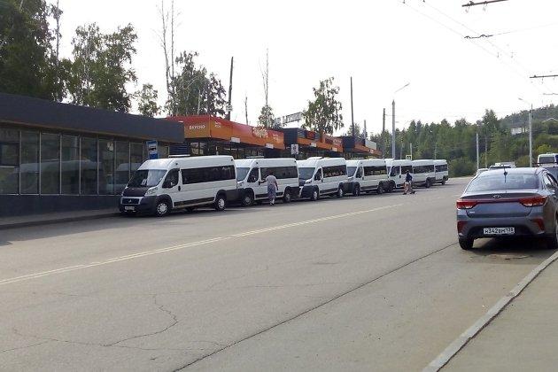 Микроавтобусы на остановке Университетский микрорайон