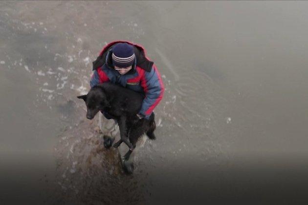 Сотрудник ГУ «Забайкалпожспас» освобождает собаку из ледяной ловушки