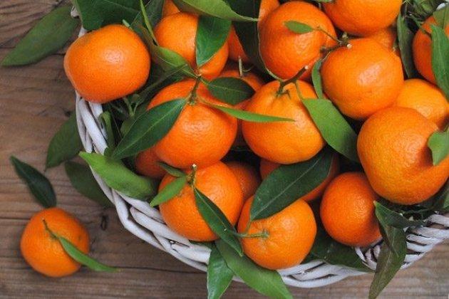 Власти Приангарья: Отравлений мандаринами врегионе незарегистрировано