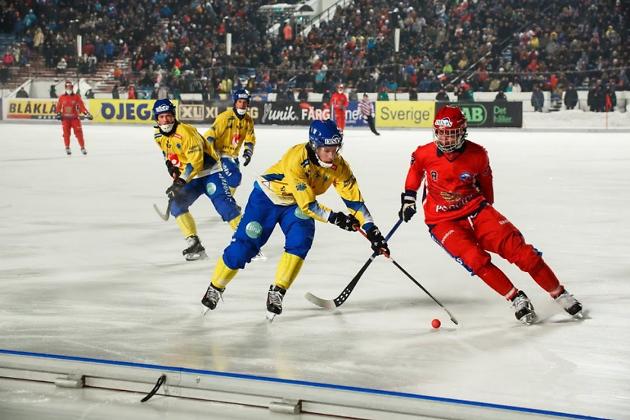 Финальный матч чемпионата мира 2014 года, проходившего в Иркутске