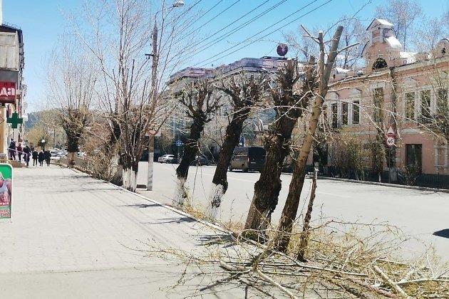 Обрезка деревьев на Амурской,82