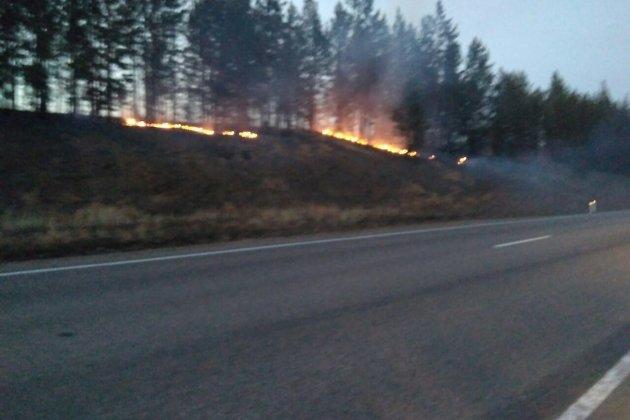 Дачный посёлок сгорел вБратске из-за пала сухой травы