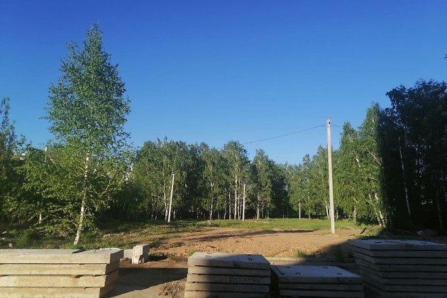 Территория, где планируется вырубка деревьев, её уже обносят забором
