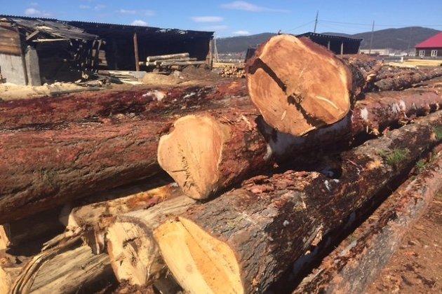 Пункт лесозаготовки в Хилокском районе