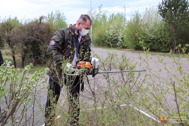 Александр Сапожников мотоножницами подстригает кусты в парке Победы