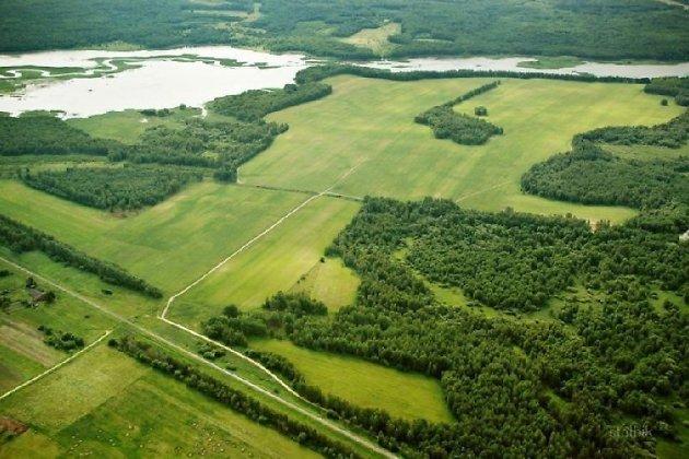бесплатный земельный участок от государства