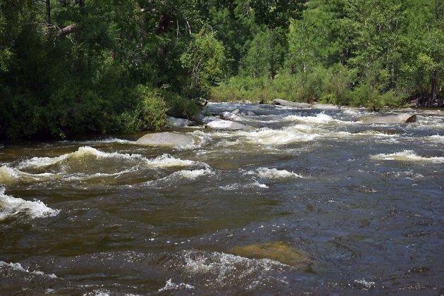 Река Агуца