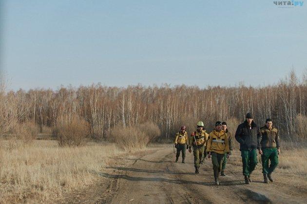 Пожарные из зоны действия лесного пожара в районе станций Кука и Лесная, 13 апреля