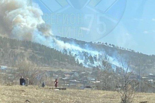 Лес горит около Песчанки под Читой