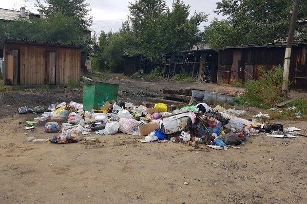 Свалка рядом с домом по переулку Бекетова, 3, спустя 2,5 недели после интервью с Максом Жлуктовым