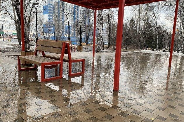 скамейки в Лисихинском парке