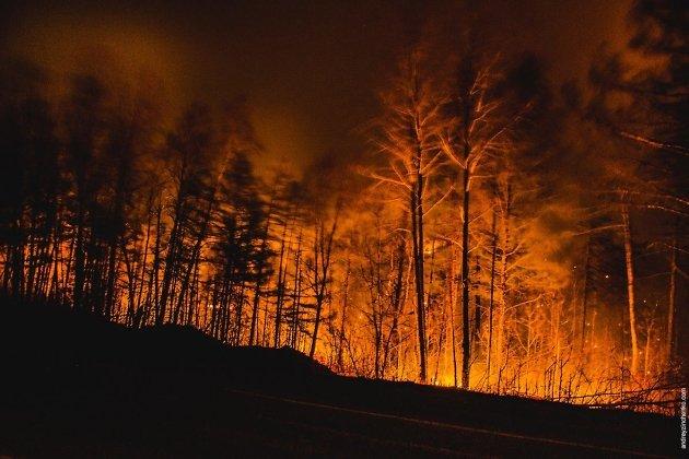 Неменее 66 тыс. галеса охвачено огнём в областях Российской Федерации