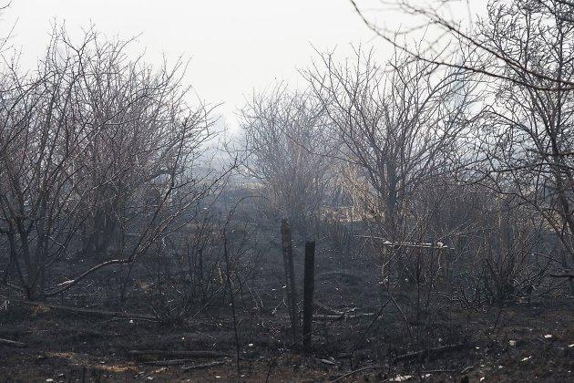 ВЗабайкалье МЧС ликвидировало 22 лесных пожара