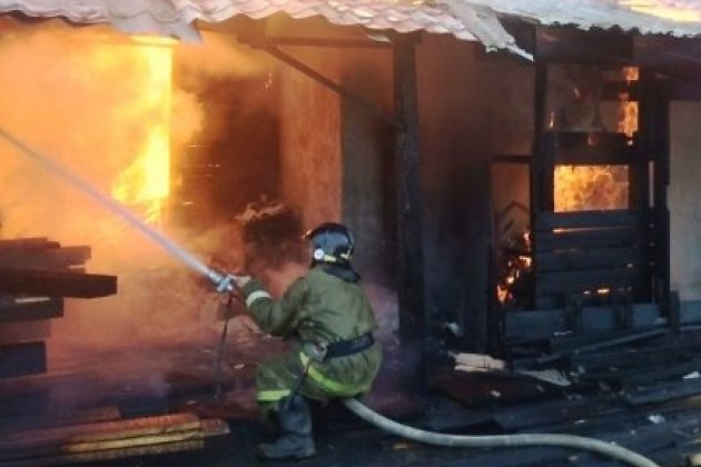 Трое детей могли сгореть напожаре вШелеховском районе