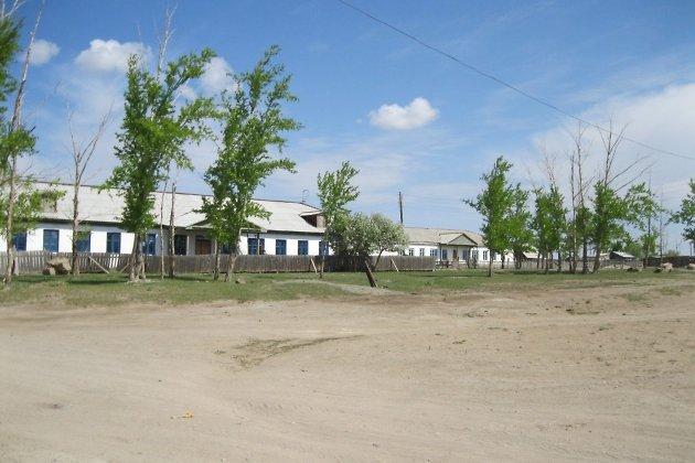 Больница в селе Новая Заря