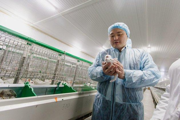 Заместитель председателя правительства Забайкальского края, министр экономического развития Александр Бардалеев с 9-дневными крольчатами