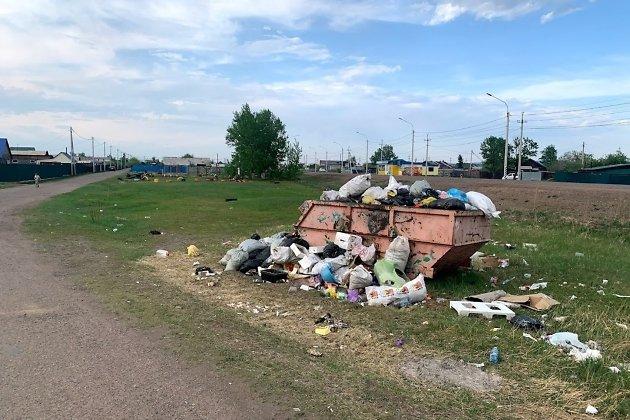 Последствия установки бункера в посёлке Биофабрика в 15 метрах от детской площадки, июнь 2021 года. Позже несанкционированная свалка убрана