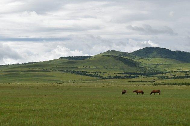 Кыринский район