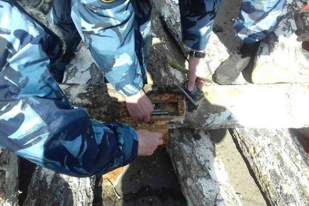Берёзовое бревно сдевятью телефонами найдено виркутской колонии