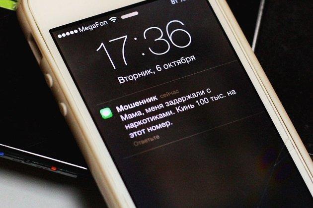 ВЧувашию под конвоем доставили подозреваемых втелефонных мошенничествах