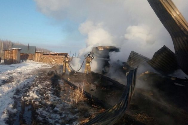 Мать с 2-мя детьми погибли вкрупном пожаре вИркутской области