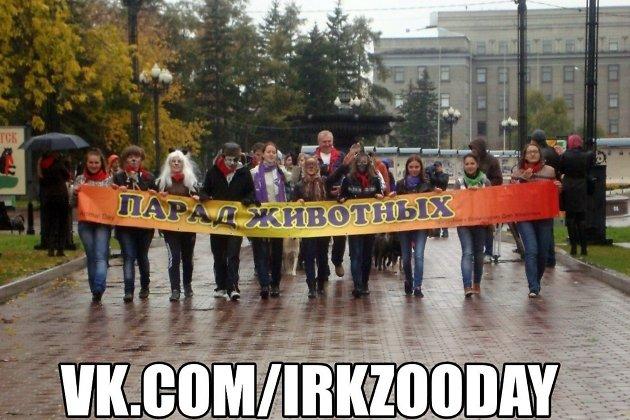 Акция взащиту животных пройдет вИркутске 1октября
