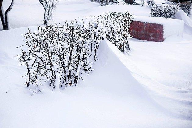 ВИркутске такого сильного снегопада небыло сдекабря 1969