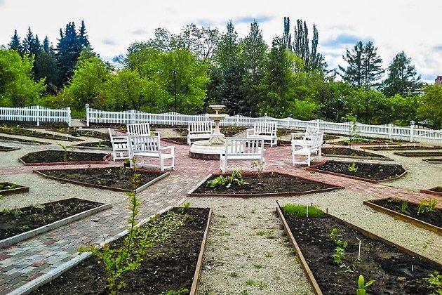 Экспозиция лекарственных растений откроется вБотаническом саду ИГУ 12июня