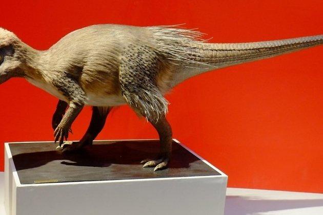 Реконструкция внешнего вида Kulindadromeus zabaikalicus (National Museum of Nature and Science, Japan)