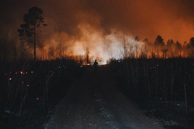 Шесть лесных пожаров ликвидировали в Иркутской области за сутки