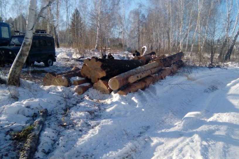 относится тем работа вахта осинский лесхоз иркутской обл фото том