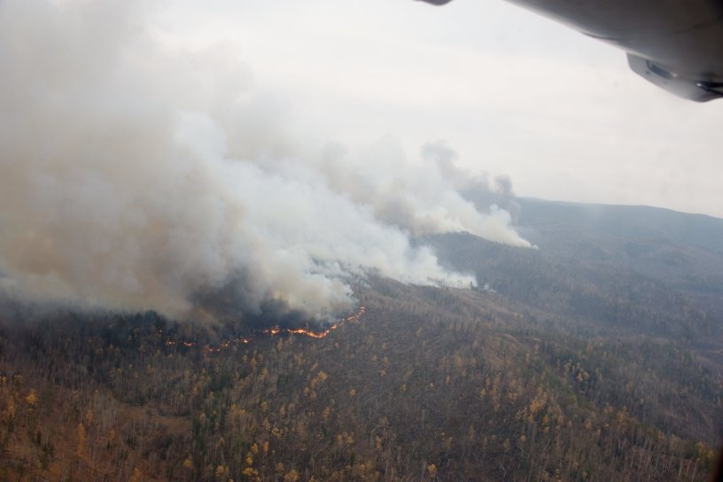 Немков сравнил число пожаров в Забайкалье с соседними регионами ДФО